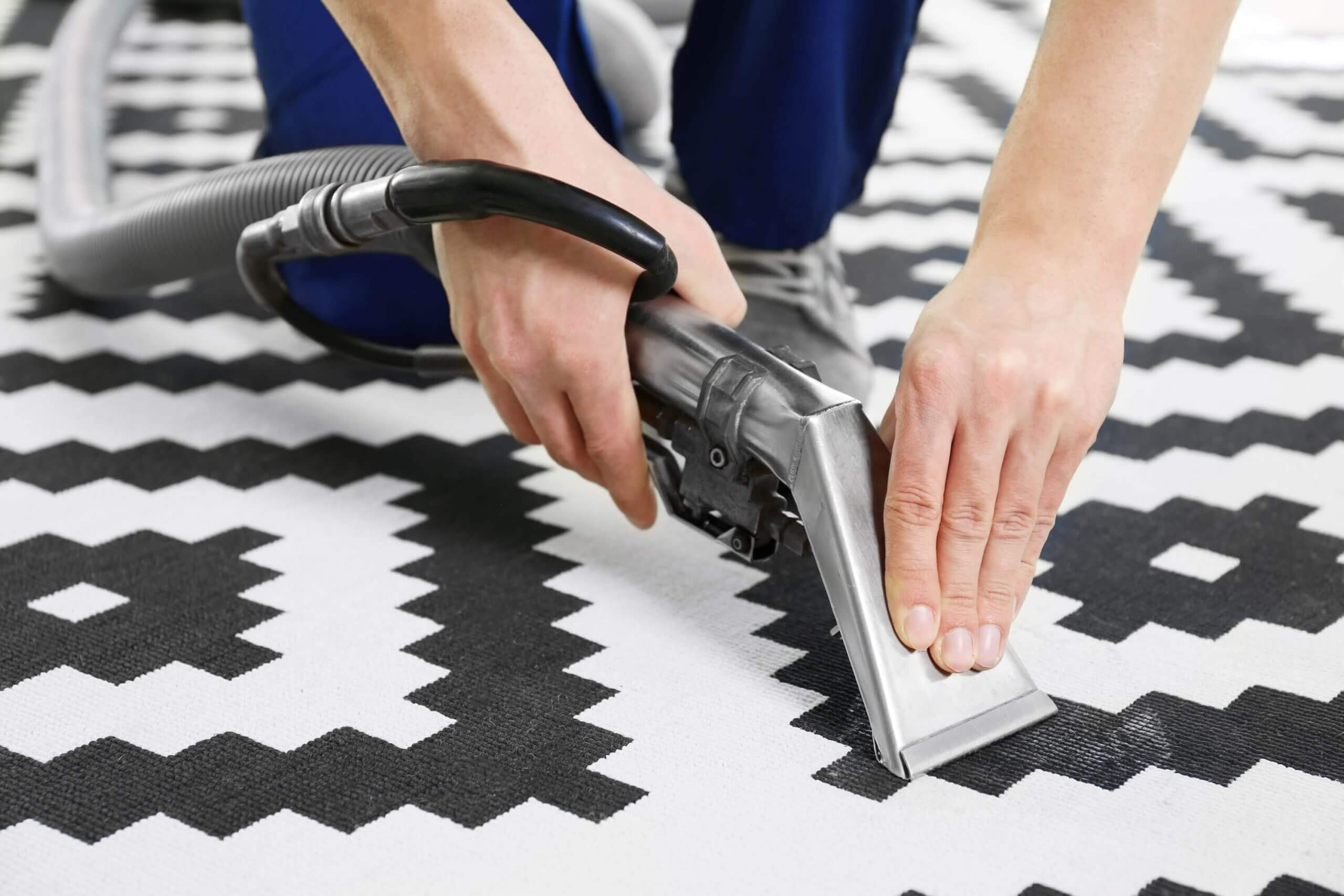 area rug cleaning service in columbia south carolina