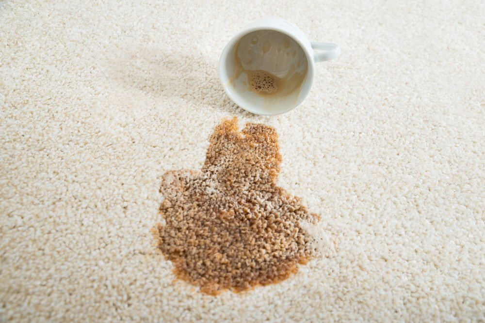 spilled mug on carpet in columbia south carolina